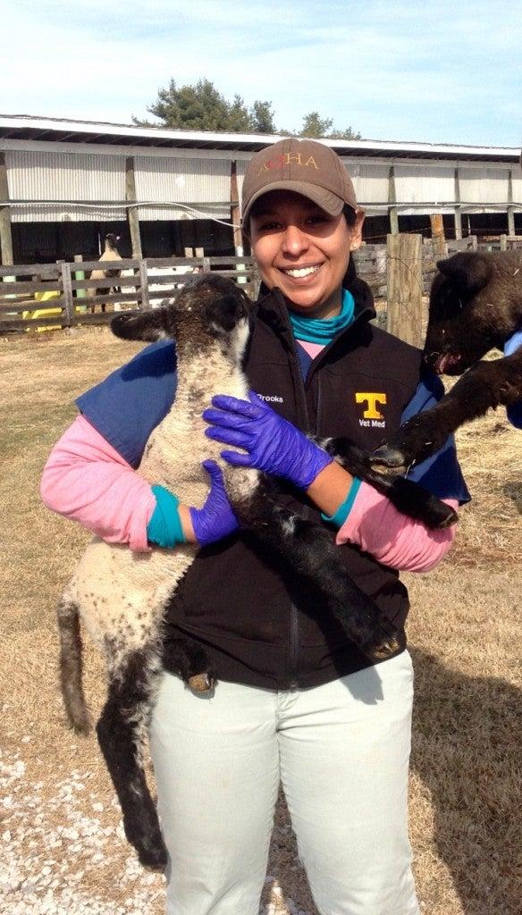 Roxann with lamb